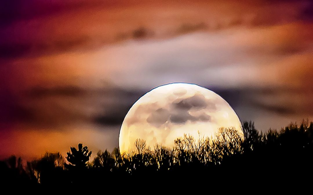 Photo of the Month – Harvest Moon by Mark Minoia